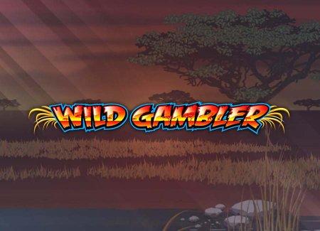 Frank Casino и игровой автомат Wild Gambler