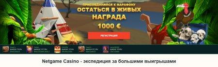 Онлайн казино Netgame или Секрет прибыльной игры